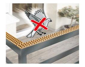 Traitement anti pigeons rabat for Pics anti pigeons